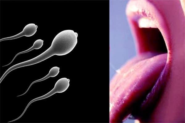 Nuốt tinh trùng có thai không là câu hỏi được nhiều người quan tâm